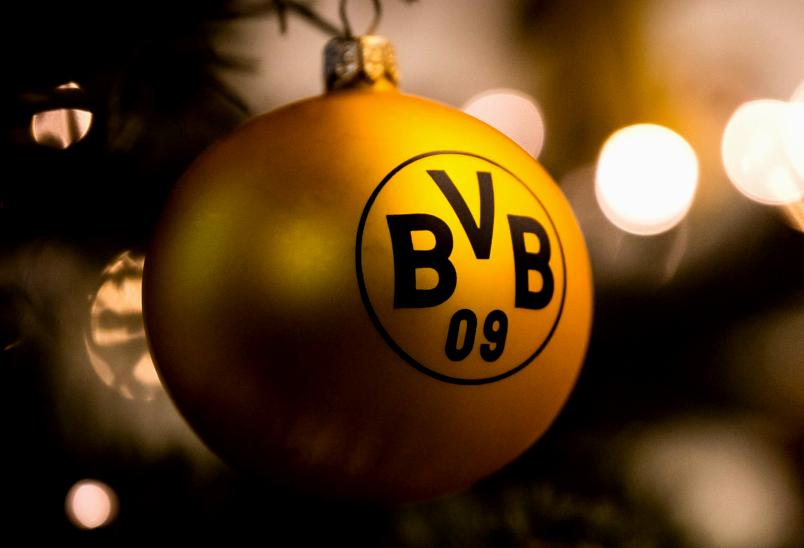 Die Herbstmeister der Bundesliga