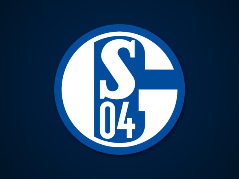Saisonvorschau FC Schalke 04: Anspruch vs. Wirklichkeit