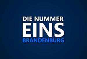Die Nummer 1 in Brandenburg: Wer war in welcher Saison das beste Team im Bundesland?